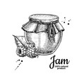 raspberry jam glass jar drawing frui vector image vector image