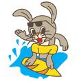 Surf Rabbit vector image