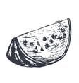 watermelon slice hand drawn sketch in grunge vector image