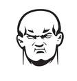 big bully head vector image vector image