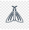 butterfly concept linear icon isolated on vector image vector image