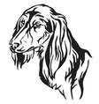 decorative portrait dog saluki vector image vector image
