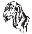 decorative portrait of dog saluki vector image vector image