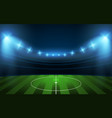 football stadium soccer arena vector image vector image
