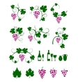 Grape vines design elements set vector image vector image