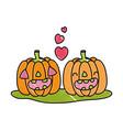 grated kawaii happy pumpkin couple with heart vector image vector image