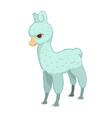 llama cartoon alpaca lama animal isolated vector image vector image