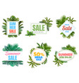 summer sale badges abstract sale poster with vector image