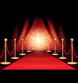 the red carpet vector image vector image
