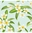 Tropical Flowers and Leaves Pattern Seamless vector image vector image