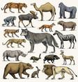 wild gorilla moose or eurasian elk camel and vector image vector image