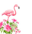 beautiful tropical image with pink flamingo and vector image vector image