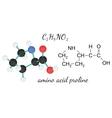 C5H9NO2 proline amino acid molecule vector image vector image
