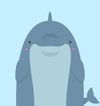 cute big fat dolphin vector image vector image