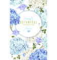 Hydrangea banner blue vector image