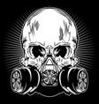 skull mask gas vector image vector image
