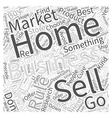 What NOT to sell on the Internet Word Cloud vector image vector image