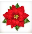 Poinsettia Christmas Star vector image