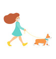 a sporty girl walks in a mask with a corgi dog vector image vector image