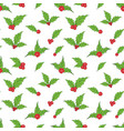 holly leaves and red berries hand drawn sketch vector image