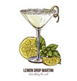 lemon drop martini with mint leaves vector image vector image