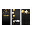 merry christmas vertical banner for stories vector image vector image