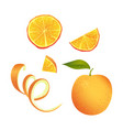 set of parts of orange vector image