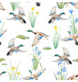 watercolor pattern with ducks vector image vector image