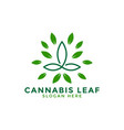 cannabis leaf logo icon design template line vector image