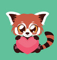 cute red panda holding a heart vector image