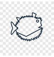 globe fish concept linear icon isolated on vector image vector image