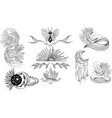 mystical and mysterious symbols vector image vector image
