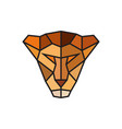 head of a lioness logo template for business vector image
