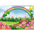 An enchanting garden with a rainbow vector image vector image