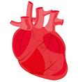 internal organ of the person heart vector image