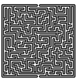 Labyrinth Kids Maze vector image vector image