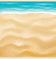 real bright sea sand beach background vector image vector image