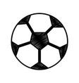 soccer ball sphere object equipment vector image