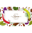 spice horizontal banner vector image vector image