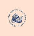 fresh fig badge fruit foliage label or logo cut vector image vector image