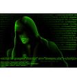 hacker and computer codes vector image