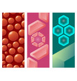 hexagon design geometric flayer elements vector image