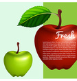 Poster design with fresh apples vector image