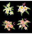 tropical flowers and leaves set exotic plumeria vector image vector image
