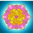 Vintage Floral mandala card vector image