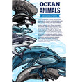whale and shark ocean animal sketch poster vector image vector image