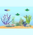 aquarium fish swimming among stones and seaweed vector image