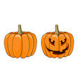 halloween pumpkin colored orange doodle vector image vector image