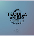 logo gold tequila agave vector image vector image