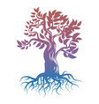 magic bright tree with roots tree silhouette vector image vector image